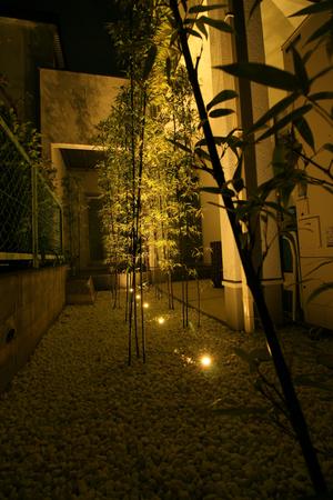 四方竹をライトアップ
