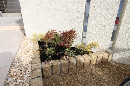 アプローチ横の花壇