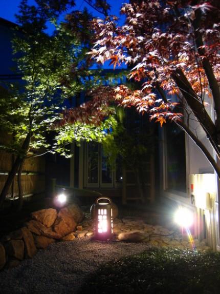 和風庭園を照らす