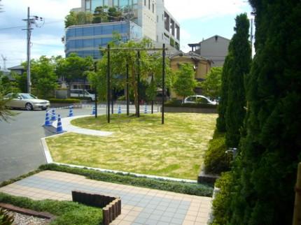 広々とした芝の庭