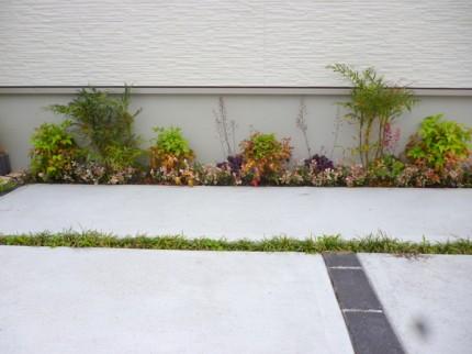 駐車場側の下草