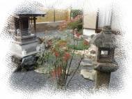 和風庭を作庭